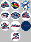 Columbus Blue Jackets Set 10 Buttons or Magnets NEW 1.25 inch $4.5 USD on eBay