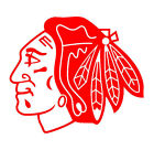 Chicago Blackhawks Vinyl Decal + BOGO $9.0 USD on eBay