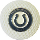 INDIANAPOLIS COLTS GOLF BALL MARKER IN ACRYLIC POKER CHIP GIFT IDEA  NFL on eBay