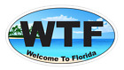 Wtf Welcome To Florida Oval Bumper Sticker Or Helmet Sticker Beach D7168