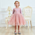 Kids Baby Girl Long Sleeve Dress Lace Princess Tulle Party Dresses Casual Wear