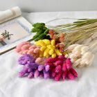 20x Dried Flowers Bunch Wedding Garden Home Decor Craft Gifts Natural Dry