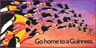 Toucans Go Home Guinness Vintage Poster Print Beer Advertising Ireland