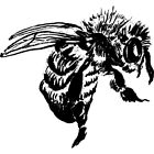 'Bee' Rubber Stamp RS011118