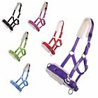 Caveson Lunging Aid for Floor Work Colour Selection Size Shetty, Pony,Cob,Full
