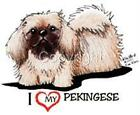 Pekingese Dog Tshirts Nightshirts 7440 Kiniart Pet