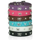 Rhinestone Crystal Skulls Dog Cat Pet Collar 5 colors