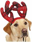 HOLIDAY TARTAN Antlers, Bandanas & Scrunchies for Dogs - Holiday Coordinates
