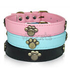 "8-22"" Pink Blue Black Leather Paw Dog Collar X-Small Small Medium Large XS S M L"