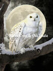 Snowy Owl Bird on snowy branch against full moon Matted Picture Wall Art A274