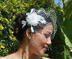 Mini VEIL SET w/ 900 PEARL Feather Fascinator & Ivory or White Birdcage Blusher