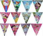 PRINCESSES GIRL THEME BIRTHDAY FLAG BANNER BUNTING PARTY SUPPLIES-1PACK