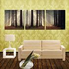 SUNRAY&TREES ready to hang 3 panel set picture mounted MDF/betterThan canvas art