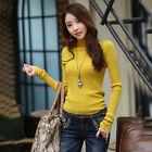 Stylish Slim Fit Turtleneck Long Sleeve Winter Wear For Women