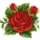 Roses - Complete Counted Cross Stitch Kit - DMC - 14 ct Aida - New - (1-10)