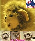 Festival Party Pet Cat Dog Costume Hat - Lion Mane Wig for Cats / Small Dogs D07
