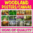 Woodland prints, poster or canvas, high quality, 12 images available