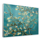 LARGE Canvas Van Gogh Almond Tree fine art print photos wall art poster GICLEE