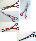 Right hand Professional Pet Grooming scissor Dog Cat Shears Pets scissors Sale