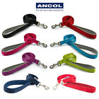 Ancol Nylon Padded Handle Dog Lead Leash Puppy Soft Durable Strong All Sizes