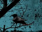 Raven - Crow on Blue Rust Industrial Crow Matted Picture Art Print A672