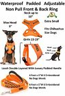 Vest Harness Non Pull Front Back Ring NO DOGS Not Good With Other Dogs Leash Set