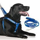 Strap Harness Color Coded SERVICE DOG Blue Luxury Handle Leash Sets Safe L-XL