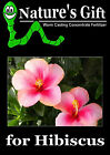HIBISCUS PLANTS, HIBISCUS SEEDS, FERTILIZER WORM CASTING CONCENTRATE