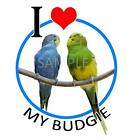Budgie Parakeet Ladies Tshirts & Nightshirt  pet bird art