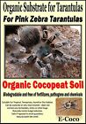 PINK ZEBRA BEAUTY TARANTULA SUBSTRATE, BEDDING, SOIL - FOR TARANTULAS TERRARIUM