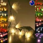 20 or 35 STAR FLOWER LED String Fairy Lights Lantern AUS PLUG Wedding Decor
