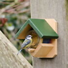 Wild Bird Feeder with Feed: Peanut Butter Pot Holder with Peanut Butter Mealworm