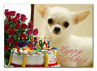 c052; Large Personalised Birthday card; Custom made for any name; Chihuahua pup