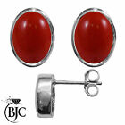 BJC® Sterling Silver Natural Red Coral Oval Stud Earrings 3.00ct Studs Brand New