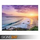 CORONA DEL MAR NEWPORT BEACH (3819) Animal Photo Picture Poster Print A0 to A4