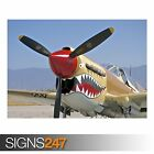 P40 WARHAWK (AA045) AIRCRAFT POSTER - Photo Picture Poster Print Art A0 to A4