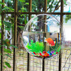 Fish Bowl Wall Aquarium Bubble Tank Acrylic Hanging Mounted Mount Home Plant New