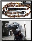 Lot wholesale 5 raw- unpolished Baltic amber collars for pets: dogs and cats