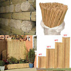 Strong Heavy Duty Professional Plant Support Bamboo Garden Canes Screening Fence