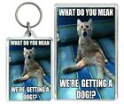 What Do You Mean Were...  Meme Dog Cat Funny LOL Keyring & Fridge Magnet Gifts