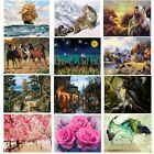 16X20'' Acrylic Paint By Number Kit DIY Oil Painting Canvas