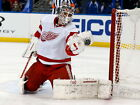 Jonas Gustavsson Detroit Red Wings Hockey HUGE GIANT PRINT POSTER $8.95 USD on eBay
