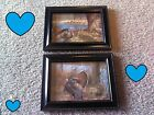 2 Turkey Pictures Nature Turkeys Rustic Wall Hangings Lodge Log Cabin Decor