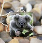 """BABY KOALA BEAR"" CUTE BABY ANIMAL BEAR GLASS TILE PENDANT NECKLACE KEYRING"