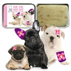 The Blissful Dog BYE BYE BOO BOO BAR DOG SOAP Includes a storage tin 3.5 ounce