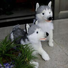New Hot Big Simulated Animal Husky Dog Plush Toy Stuffed Soft Emulational Dog