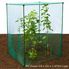 1.875m High Kit Fruit Veg Cage Plant Protection Pest with 4mm BUTTERFLY NETTING