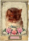 Cat A5 OR A4 size shabby chic vintage decoupage sheet - furniture decor C01