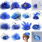 Blue Lady Pillbox Hat Fascinator Feather Flowers Hair Clips Cocktail Accessory