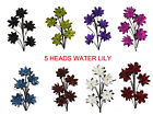 8 colors, 5 heads Supreme silk Water lily, Tall Stem